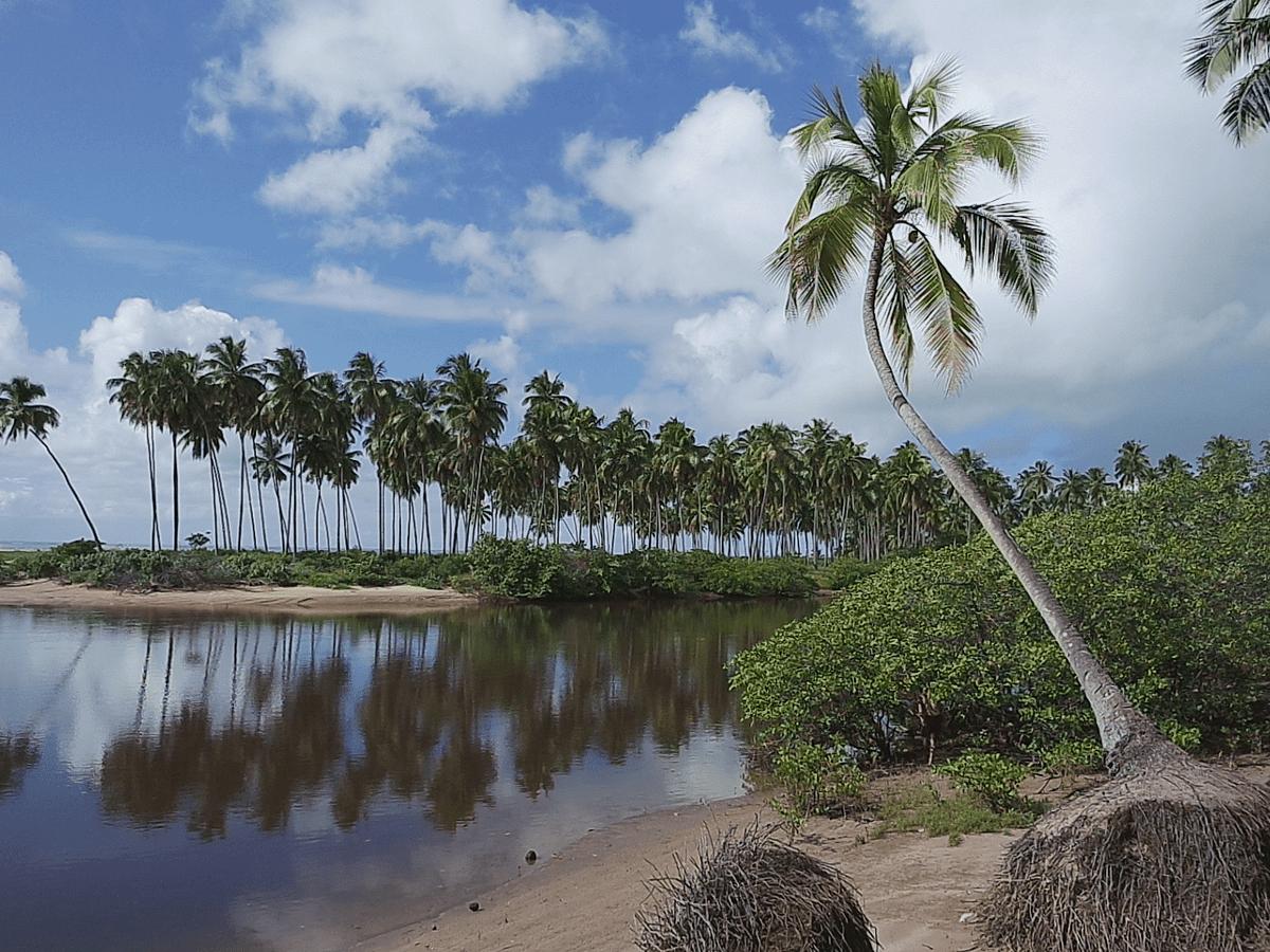 Maragogi brazil